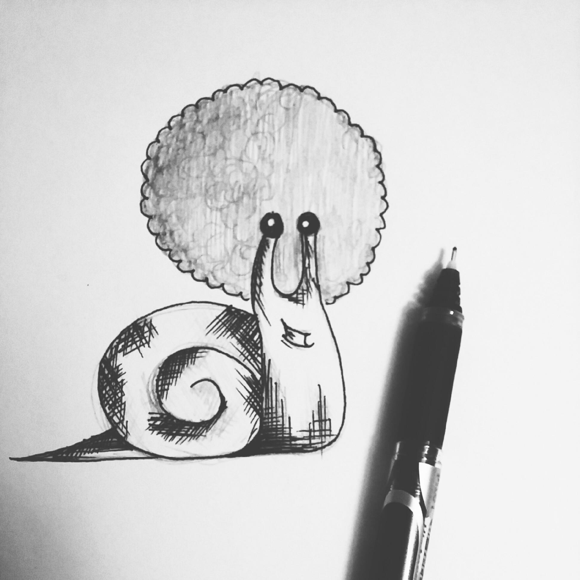 afro snail